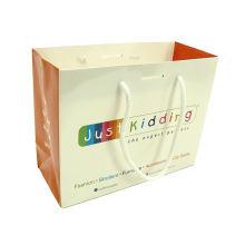 Factory Price Custom Printed Paper Bag Craft Paper Shopping Bag with Logo Print Paper Gift Bag