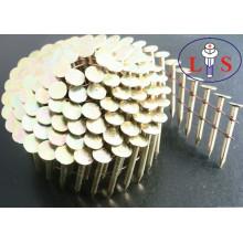 Hochwertige Eisenstahl Polieren Nägel für Gebäudesystemtechnik