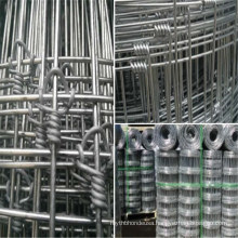 Hot Dipped Galvanized Fixed Knot Steel Wire Mesh Sheep Farm Fence