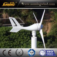 Turbine Eoliene 300W