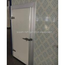 Schwingtür / Scharniertür für Gefrierschrank, Kühlraum und Kühlschrank