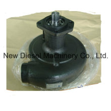 Bomba de agua Cummins Engine Part 3050443