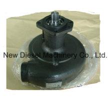 Cummins Engine Part Water Pump 3050443