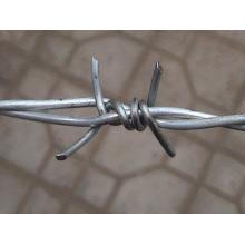 Fil barbelé galvanisé par fil de fer barbelé pour la protection
