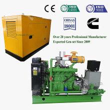Energía Renovable Biomasa Cáscara de Arroz \ Astilla de Madera \ Paja Gasificación Generador / Generador de Biomasa