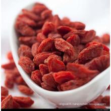 Dried Medlar From Ningxia