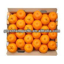 fresh orange om china