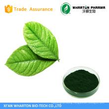 Manufacturer 100% Natural Sodium Copper Chlorophyll/Chlorophyllin Sale by Bulk