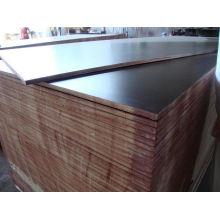 Poplar Plywood/Black Film Faced Plywood