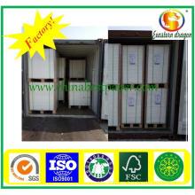 Grade AAA Folding Box Board-Paper Factory