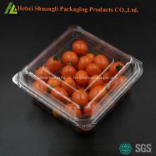 Blister Kunststoff Obst Verpackung box