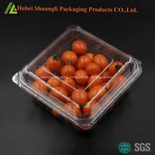 Blister plastic fruit packaging box