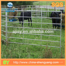 Fuera de la puerta de hierro de interior y valla de caballo cerca de alimentación animal