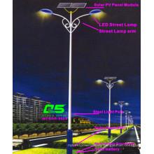 WPSRR-8604 3~15m Municipal Road Hot DIP Galvanized Steet Light Pole style