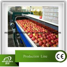 Automatic Power Apple Juice Production Line