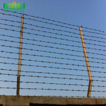 Factory+Hot+Dip+Galvanized+Stainless+Steel+Barbed+Wire