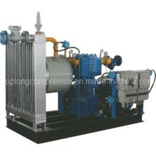 CNG Compressor LPG Compressor LNG Compressor Nitrogen Compressor (Zw-0.4/ 2-250)
