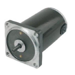 High Protection Rich Design Experience DC Motor