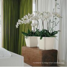 (BC-F1035) Fashionable Design Plastic Self-Watering Flower Pot