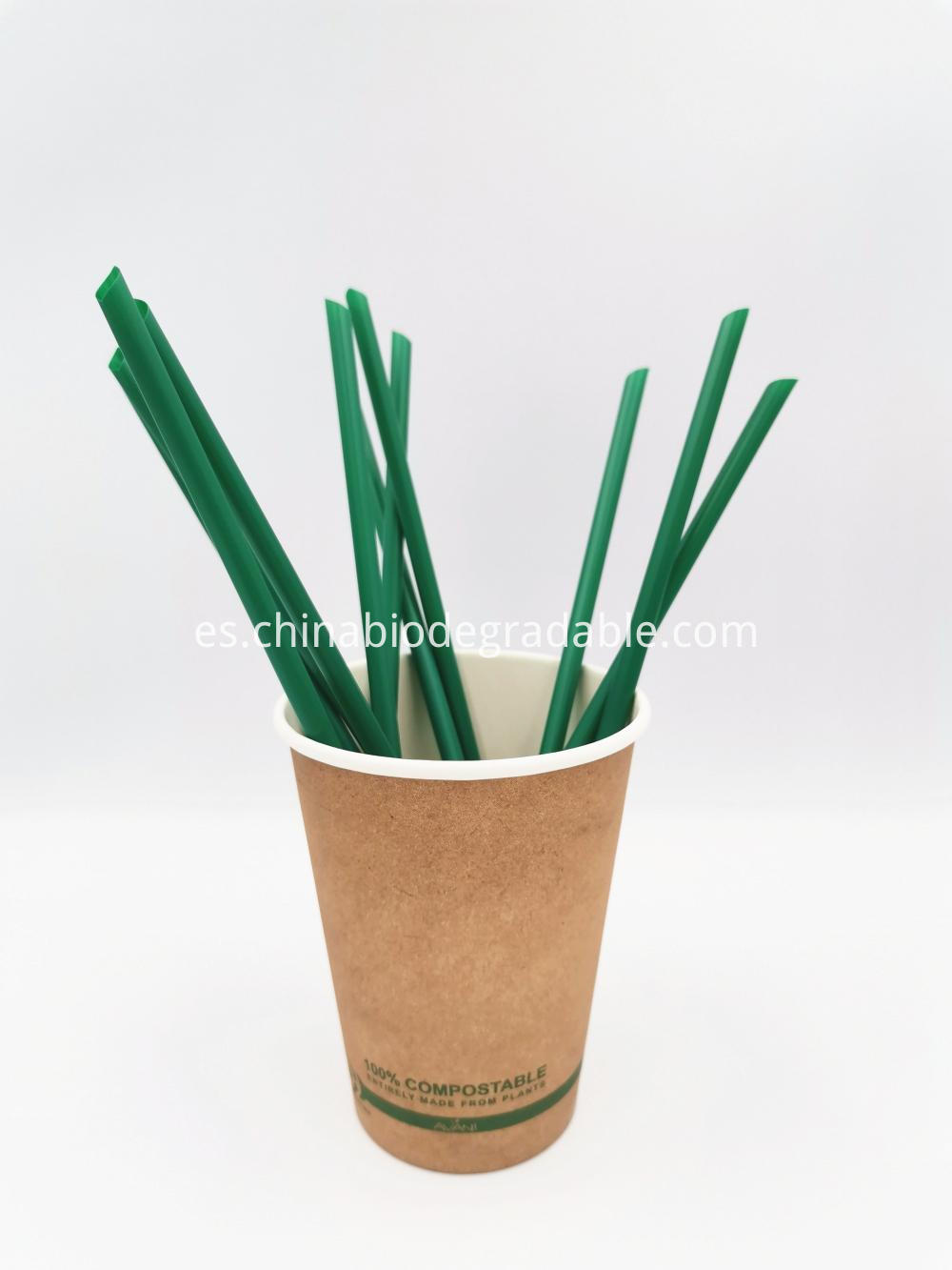 Cornstrach 100% Natural Plant Eco Straws