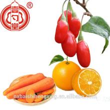 Superfood getrocknete Goji Beere rote Frucht