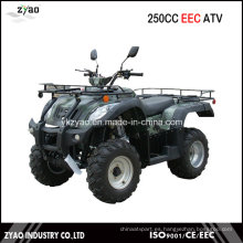 Jianshe 250cc CEE Quad Big Power 10 pulgadas de rueda