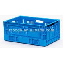 molde plástico da caixa da fruta / alimento