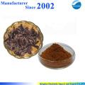 Chinese supply high quality pure nature radix rehmannia extract , Radix Rehmannia Preparata Extract
