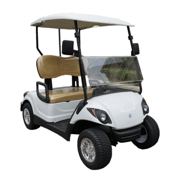 2-Sitzer Lithium-Batterie Golf Buggy
