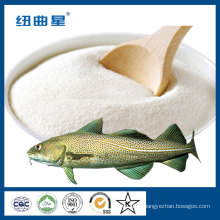 Pó de peptídeo de colágeno de peixe instantâneo 1000Da de tilápia