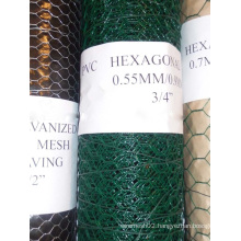"""PVC Coated Hexagonal Wire Mesh in 1/2""""to 2"""""""