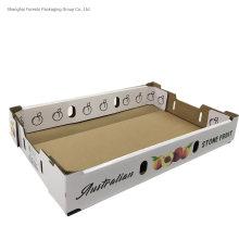 Custom Printing Fruit Tray Box