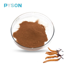 Polvo de micelio Cordyceps 7% UV