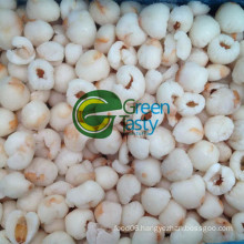 Hot Sell IQF Frozen Fresh Lychee