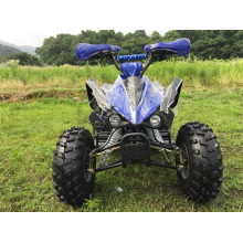 Sports ATV Quad 110cc with Full Automatic Gears for Kids