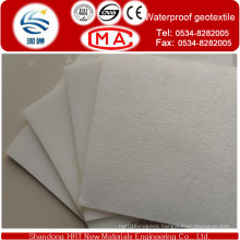 Coated Pet Geotextile HDPE Geomembrane with Thickness0.5-4.0mm