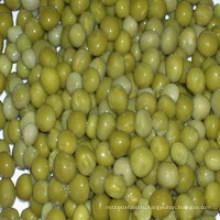 Консервированный зеленый горошек с сухим материалом / свежий материал / в банках / в стеклянной банке