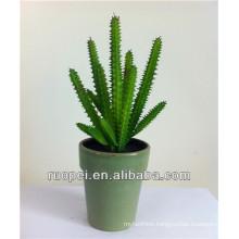 Artificial Succulent Plants Mini Artificial Cactus For Wholesale With Happy Price
