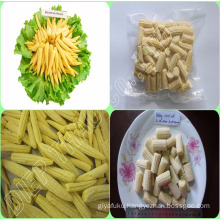 FROZEN WHOLE BABY CORN/ BABY CORN CUT