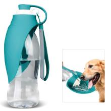 Perro botella de agua caminando