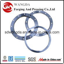 ANSI B16.5 Weld Neck Stainless Steel S310s Pipe Forged Flanges