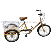 Cheap and Simple Three Wheel Cargo Tricycle (FP-TRB023)