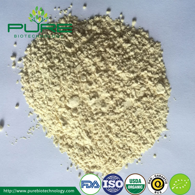 Organic Ginseng Extract root powder