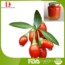 Ningxia orgánico enlatado bayas frescas de goji / fruta enlatada / goji enlatado