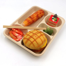 5-Compartment Bagasse Trays Disposable Natural Healthy Lunch Plate Made Of Sugarcane Fibers