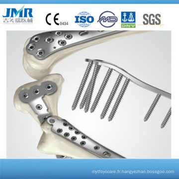 Récupération osseuse orthopédique Plaque de compression de verrouillage distal de femelle Implante de traumatisme orthopédique Plaques et vis aux os orthopédiques