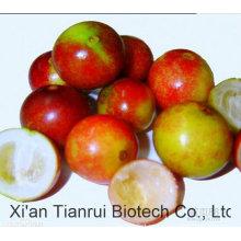 10 Ton Stock Caliente Camu Camu polvo de frutas / Camu polvo de jugo / Camu Camu polvo de extracto