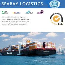 Shipping Agent in Shanghai, Ningbo, Tianjin