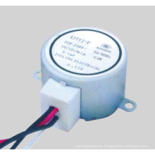 Synchronous Motor (49TDY -F)