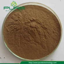 Herbal Extract Liquorice Root Extract / lakrits PE10: 1